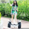 Newest Wind-Rover Motor Electric for Car 2 Wheel Electric Standing Scooter 36V 42ah 1600W Car