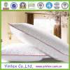 Popular Hotel Feather Down Pillow