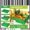 Injection Mold Supermarket Plastic Foldable Vegetable and Fruit Crate