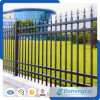 Wrought Iron Fencing/Decoration Forged Steel Using Antirust Fences