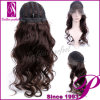 Popular Synthetic Front Lace Wigs (GP-YL9104)