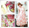 Printed Dress Chiffon Fabric for Fashion Dress