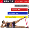 Top Rated Exercise Bands - Bulk Resistance Loop Bands for Exercise - Stretching and Physical