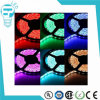 Hot Sale 3528 5050 12V RGB LED Strip