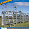 AS/NZS Steel Loading Ramp/Chute Livestock Loader