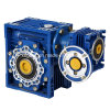 Double Worm Gearing Arrangement Reducer Gear Worm Gearbox