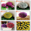 2015 Factory Manufacturer Wholesales Cheap Artificial Flower Ball
