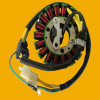 Cbx250 Twister Motorbike Stator, Motorcycle Stator for Argentina