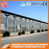 Agriculture/ Commercial Stainless Steel PC Sheet Greenhouse for Flower