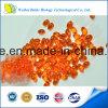 Mega Red Antarctic Krill Oil Softgel 300mg