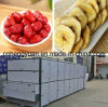 Factory Directly Sale Black Pepper and Red Chilli Drying Machine