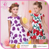 Wholesale Smocked Clothing, 2015 Summer Children Girl Dress