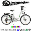 Electric Bicycles Bafang 8fun Motor (QXF01Z-2)