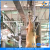 Ce Pig Slaughter House Equipment in Abattoir