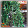 Plastic and Reasonable Price Artificial Bamboo for Decoration