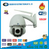 Speed Dome IP Camera, PTZ IP Camera, Outdoor IP Camera (WZH902IP)
