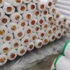 2017 Lowes Linoleum PVC Flooring /Pisos Plastico