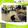 Factory Price High Quality Fitness Gym Floor Matting