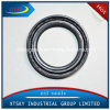 Xtsky High Quality Oil Seal (33111-31G00)