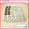 Flat Washer/Split Lock Washer/Square Washer/Finishing Washer Galvanized