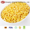 Frozen Super Sweet Corn Kernels