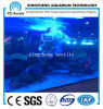Cell Cast Acrylic Sheet of Aquarium Project Price