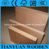 Cheap Laminate Commercial Plywood/Eucalyptus Plywood
