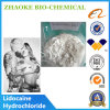 Local Anesthetic Agent Lidocaine HCl Lidocaine Hydrochloride Powder