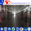 """Long-Term Production Supply Shifeng Nylon-6 Industral Yarn Used for Nets/Viscose Yarn/Tyre Cord/Twisted Yarn/Transparent Nylon/Torque Yarn/Polyester Yarn"