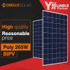 Morego A Grade Double Glass Poly Solar Panel 265W 10% Light Transmittance