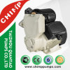 Single Phase Small Smart Intelligent Auotmatic Vortex Water Pump