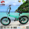 250W Fat Tire Electric Bike