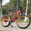 Newest Mountain E Bike for Sale