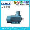 3 Phase AC Induction Mine Anti-Explosion Motor
