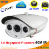 Weatherproof LED Array IR 1.0 Megapxiel IP Web Cam