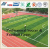 Professional Football Synthetic Turf Artificial Grass with Factory Price