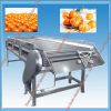 High Quality Small Motor Vegetable Fruit Grader for Sale
