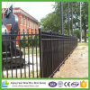 Wrought Iron Ornamental Tubular Fence