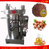 Moringa Tea Camellia Pumpkin Olive Oil Press Machine for Sale