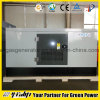 20kw Natural Gas Generator Set with Amf&ATS
