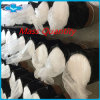 Active Pharmaceutical Ingredients Aarticaine HCl