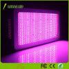Full Spectrum 300W 600W 900W 1000W 1200W 2000W LED Grow Light