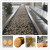Different Flaver Hard and Soft Biscuit Production Line