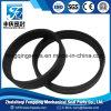 PTFE POM Nylon Phenolic Guide Ring