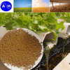 Granule Fertilizer Amino Acid Compound Organic