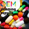 OEM Slimming Capsule Rapidly Slimming Diet Pills Weight Loss