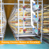 Automatic poultry cage for broiler raising chicken poultry farm equipment