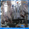 Hot Cow Slaughtering Line Processing Line Slaughtering Equipment