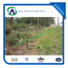 Australia Star Picket Y Post for Cattle Fence