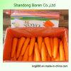 High Qualtiy&Delicious Fresh Carrot
